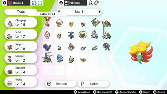 pokemon schild von vorne anfangen